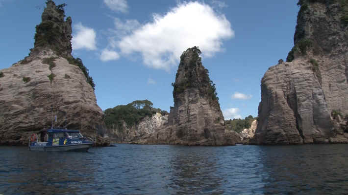 Coromandel Cathedral Caves Tour